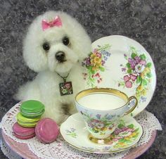 Mini Macaroon, Poodle puppy mixed media, Fine China by LisaPay on Etsy
