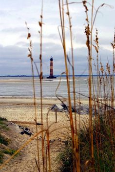 the lighthouse at Folly Beach, SC