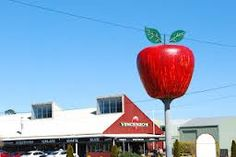 Stanthorpe apples - the Big Apple Apple Images, Country Scenes, Visit Australia, Sunshine State, Town And Country, Over The Years, Places Ive Been, Road Trip, Apples