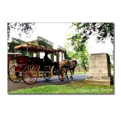 Labor Day Parade 2012 - 2 Postcards-(Package of 8)