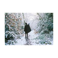 winter ❤ liked on Polyvore featuring images and pictures