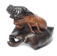 A wood netsuke of a cicada by Tomomitsu, late 19th century