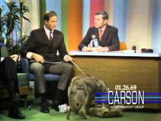 "Johnny Carson Blooper: A Coyote Answers Nature's Call on ""The Tonight Sh..."