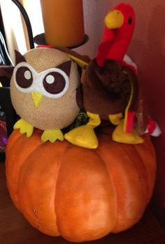 Owly has a new companion to hang out with for the harvest season. Day 260 of #yearofowly #lifeofowly