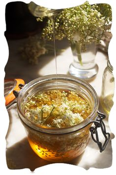 elderflower honey - I found this lovely site looking for elderflower recipes... check it out! xo phoebe's pure food