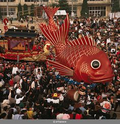 Karatsu Kunchi is a Japanese festival that takes place annually in the city of Karatsu, Saga Prefecture, on Japan's island of Kyūshū.