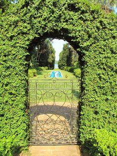 On and On. McClay Gardens   Photo by Liz Baska