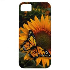 Sunflower Radiance Monarch Butterfly iPhone 5 Cover