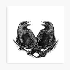 Huginn and Muninn – / In Norse mythology, Huginn and Muninn are a pair of ravens that fly all over the world, Midgard, and bring information to the god Odin. Viking Raven, Viking Art, Raven Tattoo, Tattoo Bird, American Crow, Raven Art, Norse Mythology, Norse Runes, Viking Tattoos