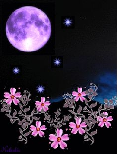 Good night sister and yours, sweet dreams Good Night Sister, Good Night Friends, Good Night Sweet Dreams, Good Night Moon, Good Morning Good Night, Evening Greetings, Good Night Greetings, Good Night Messages, Night Wishes