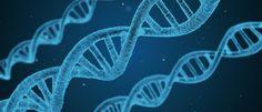 InfoNavWeb                       Informação, Notícias,Videos, Diversão, Games e Tecnologia.  : Cientistas testam com êxito substância que retarda...