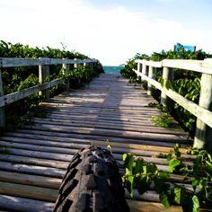 Paraíso a 50 metros... ✌🚲 #paraíso #floripa #bike