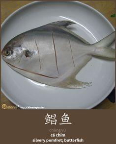 鲳鱼 - Chāng yú - cá chim - silvery pomfret; butterfish
