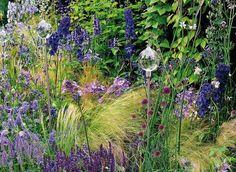 Que planter en août au jardin