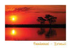 Pantanal - Brasil