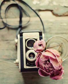 Peony & Vintage Camera Photo Art