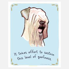 Wheaton Terrier 8x10, now featured on Fab.