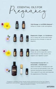 I have all you need to know about doTERRA wild orange essential oil uses including DIY recipe and a whole bunch of food and diffuser recipes. Diffuser Blends, Oil Diffuser, Essential Oils For Pregnancy, Essential Oils For Fertility, Essential Oils For Babies, Essential Oils To Avoid While Pregnant, Essential Oil Uses, Wild Orange Essential Oil, Doterra Essential Oils