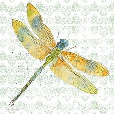 Dragonfly Bliss-JP3438 by Jean Plout