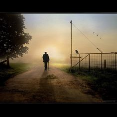 """The Open Gate,"" by h.koppdelaney, via Flickr, photograph of a solitary man walking with cane at dawn, bird on a fence. Says the photographer, ""No here - no there. Just the Path of Transformation"" #dawn #photography #mist"