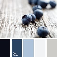 Color Palette Blueberry shades of blue are well-suited for bathroom decoration. This dark blue will look good on a light gray background, and for accents use lighter sha. Palette Design, Palette Deco, Pastel Palette, Blue Colour Palette, Colour Schemes, Color Combos, Room Colors, House Colors, Paint Colors