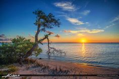 Stuart Florida Sunset Mangrove at Waterway