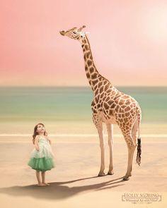 Giraffe (Holly Spring Photography)