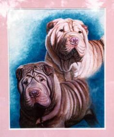Paintings by Vicki  Portrait of 2 Shar Pei dogs