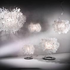 SLAMP | The Leading Light: Suspension Lamp - Fiorella