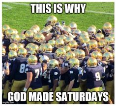 notre dame football memes for use by females Notre Dame Football, Football Quotes, Ohio State Football, Alabama Football, College Football, American Football, Funny Football, Oklahoma Sooners, Sport Football