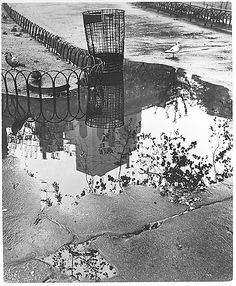 Washington Square, New York - After the Rain André Kertész  (American (born Hungary), Budapest 1894–1985 New York) Date: 1945
