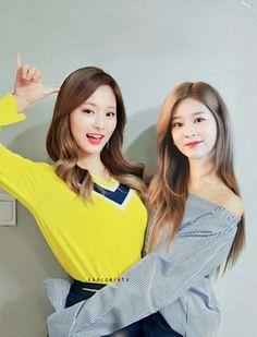 Kpop Girls, It Cast, Wattpad, Role Play, Sibling, Macarons, Idol, Collection, Random