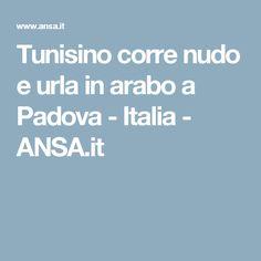 Tunisino corre nudo e urla in arabo a Padova - Italia - ANSA.it