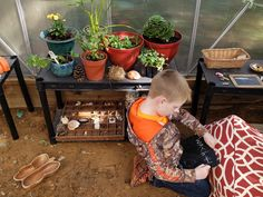 Greenhouse Classroom – Learning Barefoot
