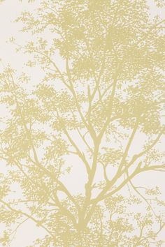 Tree Shadow Wallpaper - Urban Outfitters