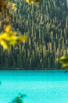 This color contrast on Lake Louise Alberta. Monochrome Photography, Nature Photography, Travel Photography, Colorful Pictures, Beautiful Pictures, Beautiful Scenery, Travel Memories, Landscape Photographers, Landscape Photos