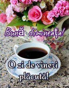 Tea, Mugs, Coffee, Tableware, Bom Dia, Kaffee, Dinnerware, Tumblers, Tablewares