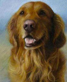 golden retriever hond dieren huisdier portret hand geschilderd klassieke home decor schilderen met olieverf op doek vrij snel het verschepen(China (Mainland))