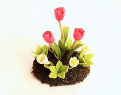Daffodil Minigarden delicate and beautiful 1 pcs by Mycraftgarden