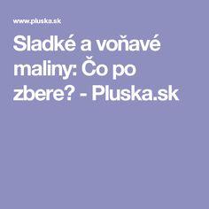 Sladké a voňavé maliny: Čo po zbere? - Pluska.sk