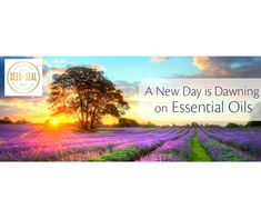 The Oily Advocate: Young Living Essential Oils, Pennsylvania