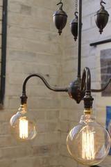 Gooseneck Chandelier Light with ornamental brass pulley
