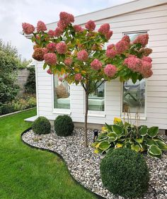 Small Front Yard Landscaping, Home Landscaping, Landscaping With Rocks, Country Landscaping, Corner Landscaping Ideas, Front Yard Ideas, Landscaping Blocks, River Rock Landscaping, Florida Landscaping