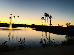 Looking for a place to call your winter home? Sun Lakes AZ is a 55+ retirement community. See homes at https://TheKolbTeam.com