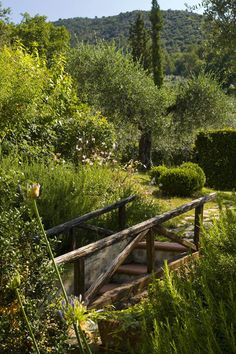 "in this case, it would be a pleasure to ""cross that bridge as we come to it""... Mille rose umbre nel giardino"