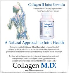 In the body, specialized cells known as chondrocytes excrete collagen however they need Vitamin C along with the right amino acids to make collagen successfully.* Collagen II Joint Formula dietary supplement by Collagen M.D.® is a source of the amino acids used by the body to support the natural mechanisms that produce the collagen needed to support joint matrix health.* Made in California under strict cGMP guidelines and free of gluten, dairy, sugar and soy. #CollagenMD…