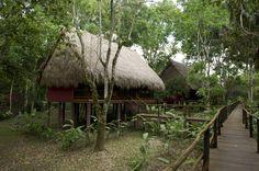 Centro Ecoturistico-las Guacamayas Chiapas