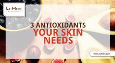 La Mav Organic Beauty & Wellness Blog