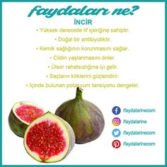 What are the benefits of fig İncir faydaları nelerdir What are the benefits of figs - Vitamin A, Health Benefits Of Figs, Low Carb Meal, Instant Pot, What Happens If You, Medical Information, Health And Nutrition, Fitness Nutrition, Workout Plans