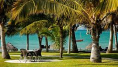Vilanculos Beach Lodge, situated on the Indian Ocean coastline of Mozambique, Destin Beach, Beach Hotels, Lodges, Places To Go, Africa, Ocean, Explore, Competition, Trips